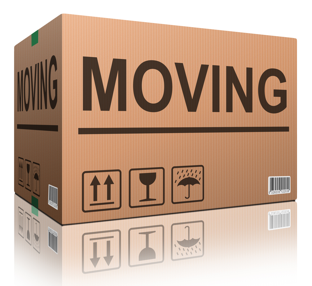 MOVING IN NEW JERSEY WITH AN IEP